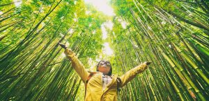 Want to Reduce Your Travel Footprint? Try Carbon Offsets