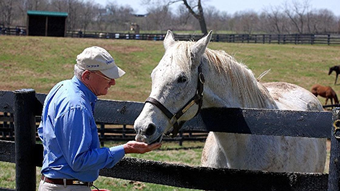 Travel: Meet some 'Old Friends' in Kentucky's horse country | Lifestyles – Travel